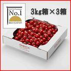 データプレミアムNo.1 ENRICHIミニトマト3kg3箱