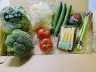 季節の野菜8種のサラダセット