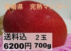 (宮崎県産)完熟マンゴー 2玉 0.7kg