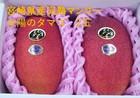 【宮崎県産】完熟マンゴー 太陽のタマゴ 2玉 0.8kg