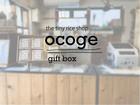ocoge gift box 【 mid 】