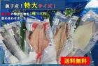 【送料無料】銚子港黒潮干し・特大干物詰め合わせ4種5枚 ※沖縄離島別途送料が発生いたします。