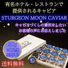 STURGEON MOON CAVIAR 30g×12個 桐箱入 【送料無料】