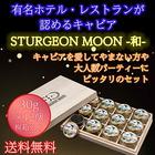 【予約販売】STURGEON MOON -和- 30g×12個 桐箱入 【送料無料】
