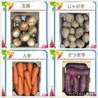 野菜セットC