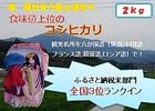 恋瀬姫の舞2kg【送料無料】沖縄,離島除く(つくば山麓厳選コシヒカリ)