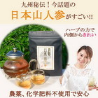 【希少】日本山人参茶30包入り2セット