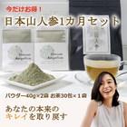 【希少】日本山人参茶とパウダー体質改善!1か月分セット