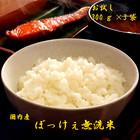 おいしい!無洗米300g(2合)×3【送料無料/日時指定不可商品】