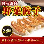 国産厳選野菜餃子