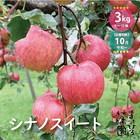 「シナノスイート」 レギュラー品 3kg