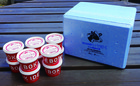 いでぼくオリジナルの生乳を使用した高品質 ジェラートアイス10個セット