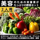 【美容に必要な栄養素がたっぷり!】野菜セット 詰め合わせ セット 2人用 九州野菜 九州産 有機野菜