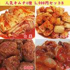 人気キムチ4種5000円セットB