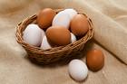 採れたて白&豊卵(20個入)