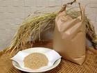 自然栽培のお米「にこまる」玄米 10kg