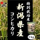 令和元年産 新潟県産 特別栽培米コシヒカリ 2kg