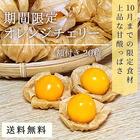 【青森県産小麦100%】 小麦粉(薄力粉) 500g チャック付き 十和田産 2019年産