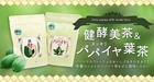 スッキリパパイヤ葉茶