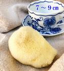 【送料無料】天然海綿スポンジabout8cm シルク種