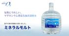 【送料無料】オアシスO2ミネラルモルト 海洋深層水(ワンウェイボトル) 2本セット
