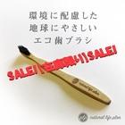 【送料無料】【予約販売・6月下旬入荷予定】天然竹使用 環境に配慮したエコ歯ブラシ 4本セット