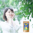 【送料無料】八重山クロレラ×広島産レモン【レモクロ】
