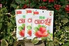 EAST CBDグミ いちごの味 CBD20mg/粒 【送料無料】
