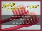プロフェッショナル歯ブラシ