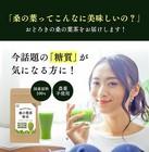 【送料無料】桑の葉茶【粉末】