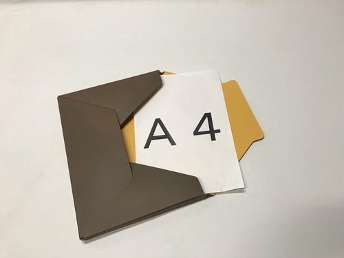 メール便対応型BOX  『カートンフィーノ』からしxダークブラウン