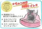 チンチラ用陶器トワレ