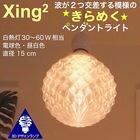 1灯 ペンダントライト 直径 15 cm Xing2 3Dデザイン電球付き 3畳 おしゃれにきらめくオリジナル透明ランプシェード 電球色/昼白色 30~60W 相当 ダイニング用 食卓用 波模様 凹凸 凸凹 LED照明器具 インテリア