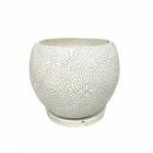 ラライワント丸型陶器鉢 ホワイト 8号鉢