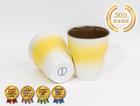 【HEALBO(ヘルボ)と波佐見焼のコラボカップ!!】【送料無料】