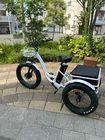電動三輪車「Innovation trike」一般モデル