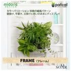 ミドリエデザイン 土を使わない 壁掛け 観葉植物 FRAME 【ポイント10倍】