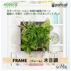 ミドリエデザイン 土を使わない 壁掛け 観葉植物 FRAME木目調 【ポイント10倍】