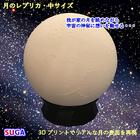 月のレプリカ 中サイズ