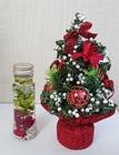 ミニクリスマスツリーとハーバリウムセット