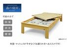 【送料無料】「森の寝床」炭入り健康ベッド ヒノキ ヘッドレス シングルサイズ 床高さ40cm