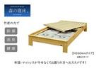 【送料無料】「森の寝床」炭入り健康ベッド ヒノキ ヘッドレス セミダブルサイズ 床高さ26cm 受注生産