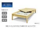 【送料無料】「森の寝床」炭入り健康ベッド アッシュ ヘッドレス シングルサイズ 床高さ40cm