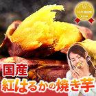 送料無料 人気焼き芋5本セット 国産 紅はるかの焼きいも [常温便]【free10】□