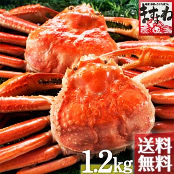 [こだわりのボイルずわい蟹/姿1.2kg仕立て](600g前後×2匹)化粧箱包装(送料無料)【カナダ・ロシア産】