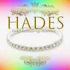【HADES -ハーデス-】