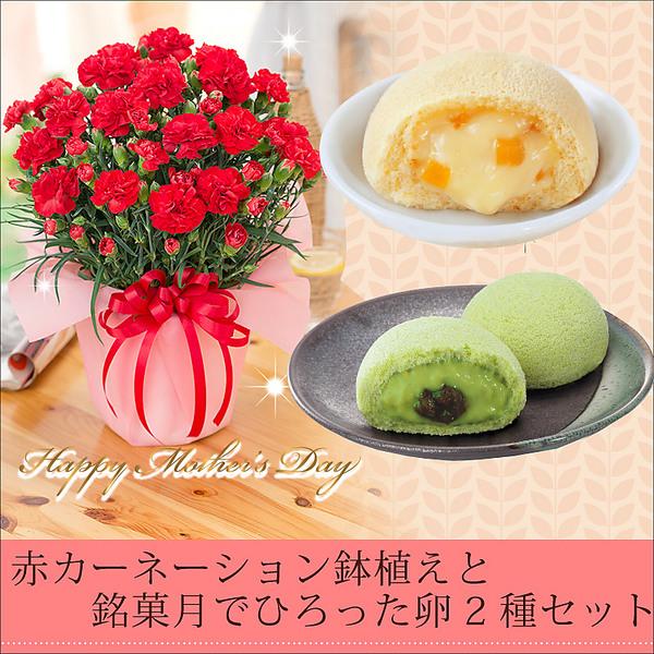 【2018母の日ギフト】赤カーネーション鉢植えと欲張りスイーツセット!月でひろった卵プレーン&小野茶