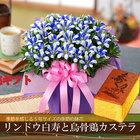 敬老の日 2021 プレゼント花とカステラ 選べる季節の鉢花 りんどう白寿 鉢植えギフト 9月16日から20日にお届け