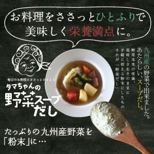 【送料無料】タマチャンの九州野菜スープだし80g 九州産野菜をたっぷり使用「ささっとひとふり大地の旨味」お料理の基礎が変わる。「野菜スープダシ」11種類の九州産野菜を粉末化【無添加/だし/九州/野菜だし】ファイトケミカルスープ