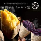 【送料無料】人気の安納芋&ゴールド紫 の種子島夢芋セット合計2kg 芋は南九州が一番!芋焼酎で有名な宮崎・鹿児島自慢のお芋をお届けいたします♪ 【種子島安納芋&種子島紫芋】